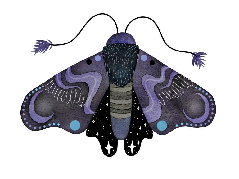 moth final CMYK